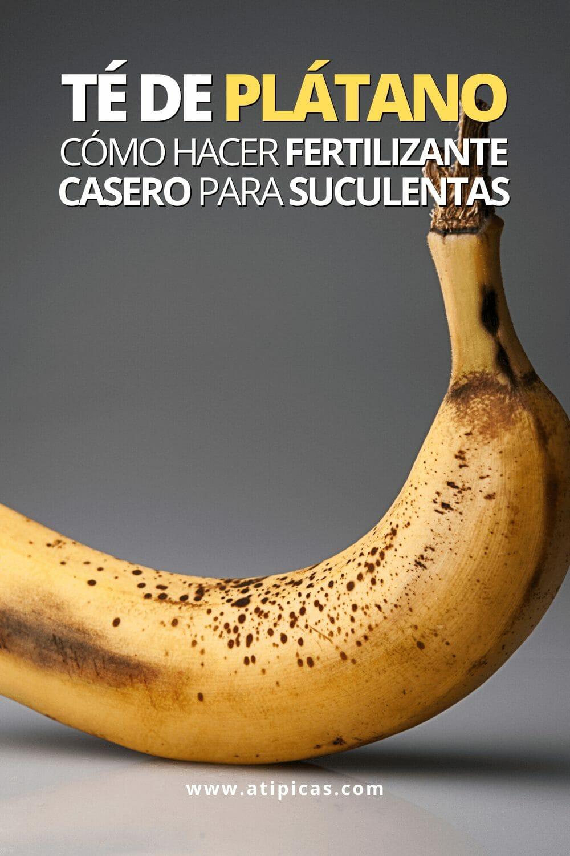 Cómo hacer té de plátano para suculentas