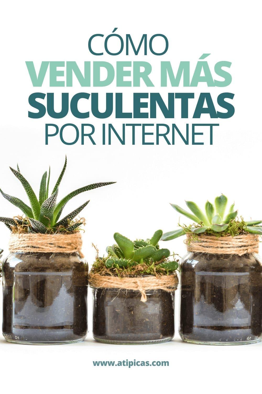 Cómo vender suculentas por internet