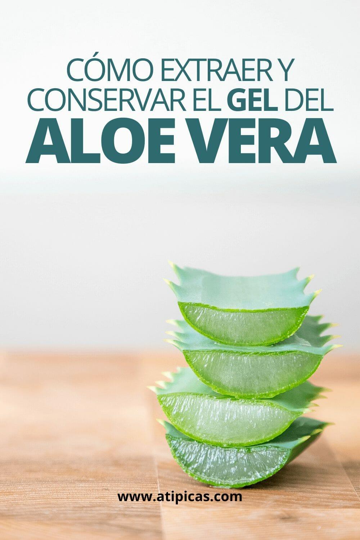 Cómo extraer y conservar el gel del Aloe vera